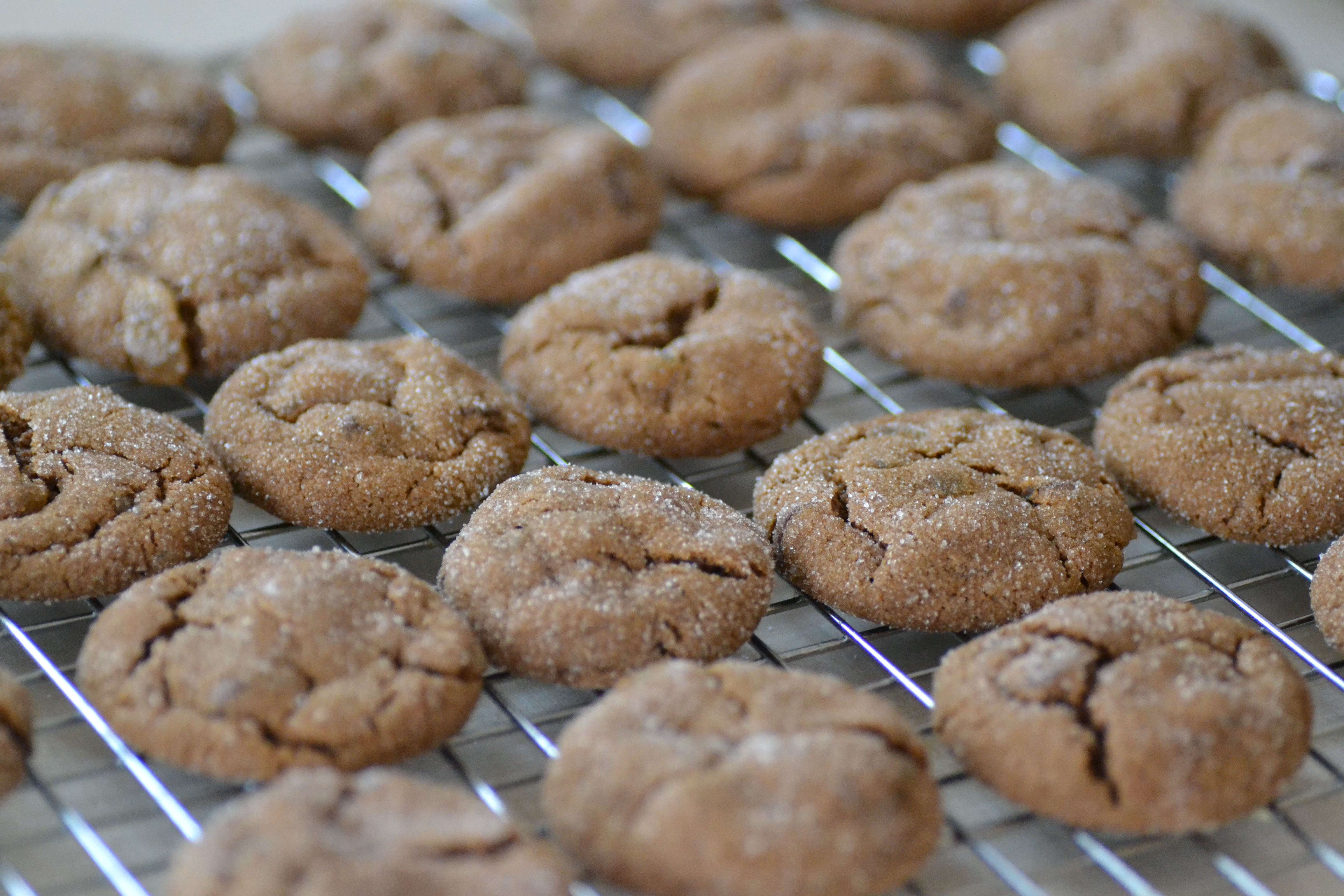 Chocolate Gingerbread Cookies – Warm Vanilla Sugar