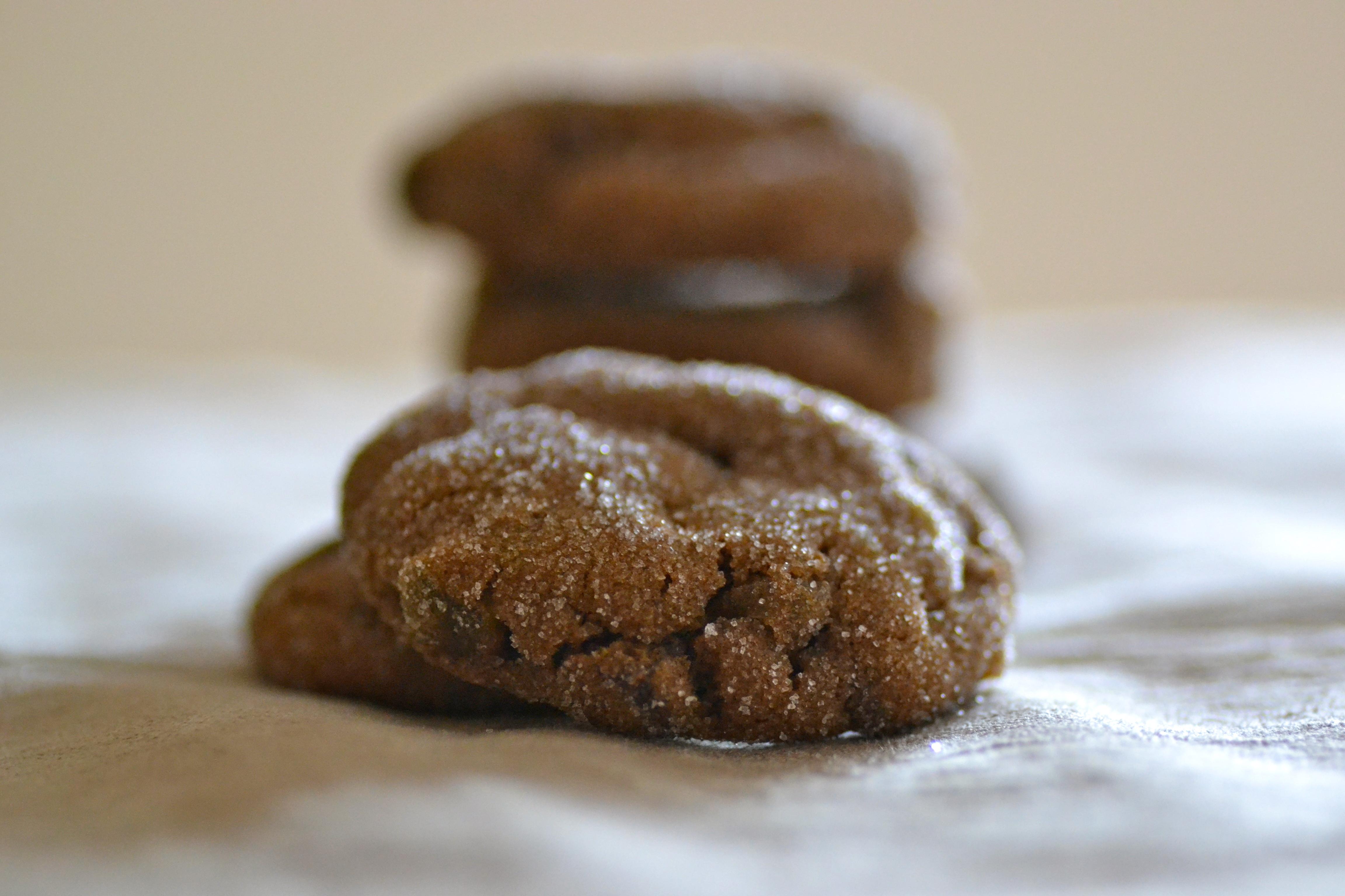 Chocolate Gingerbread Cookies {Warm Vanilla Sugar}